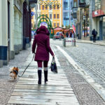 New Law in Germany Enrages Dog Owners